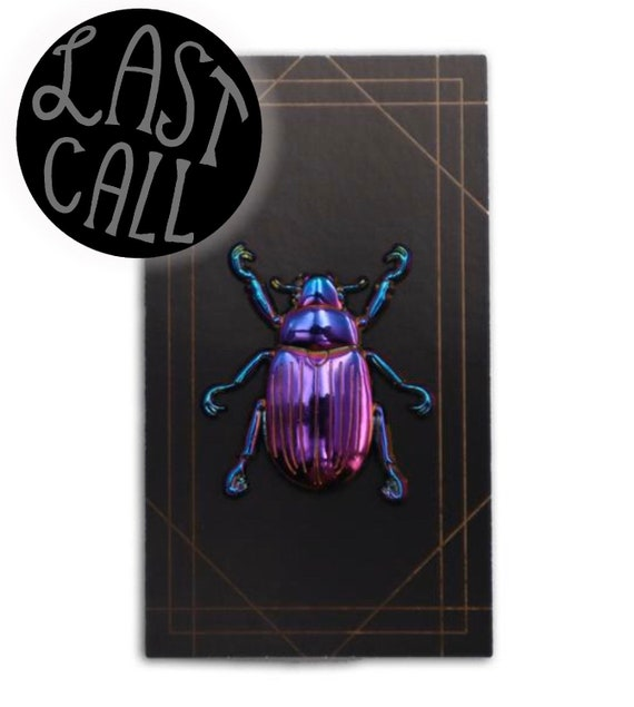 3D Rainbow Scarab Beetle Pin!