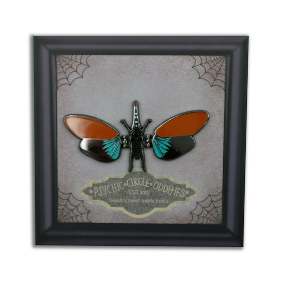 MOVING WINGS- Red nosed lantern fly - moving hard enamel pin