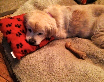 The Everywhere Pet Pillow For Dogs