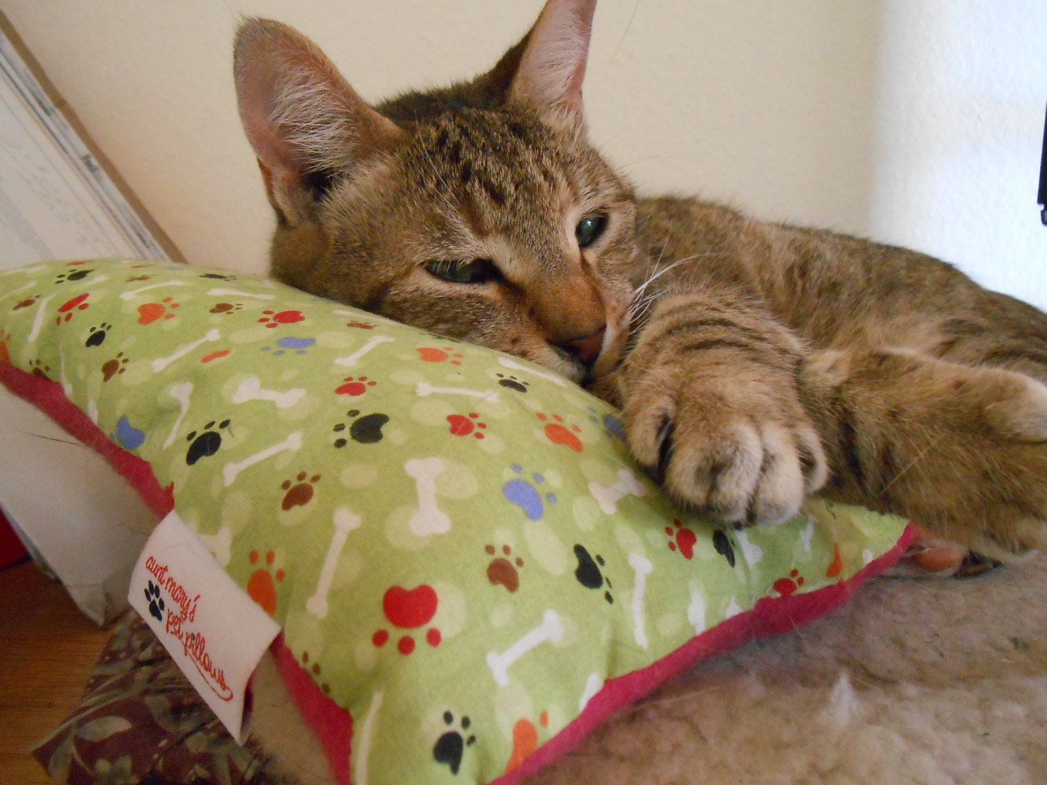 The Everywhere Pet Pillow for Cats for sale