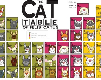 The Cat Table  Poster