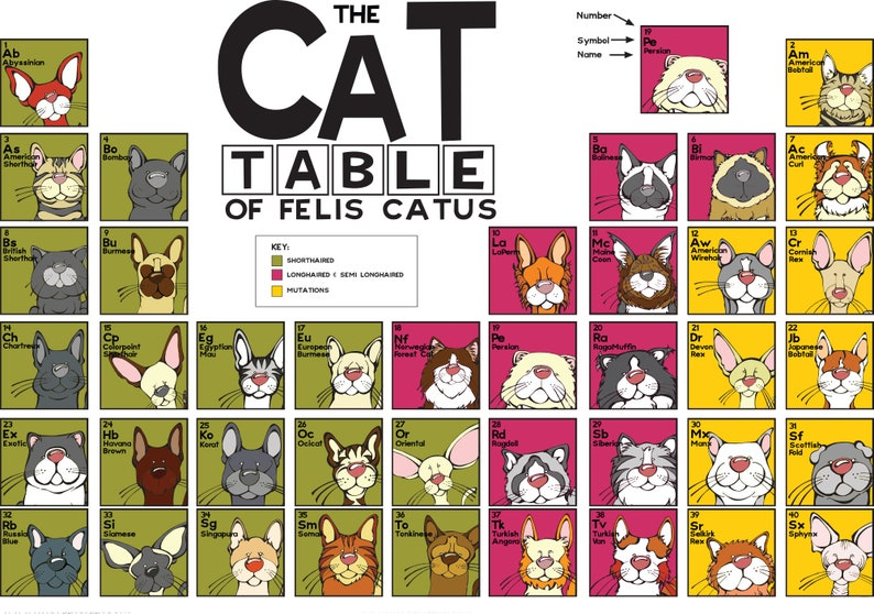 The Cat Table  Poster image 1