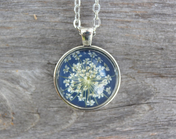 Queen Anne's Lace in Blue