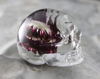 Deep Purple Strawflower Skull Paperweight
