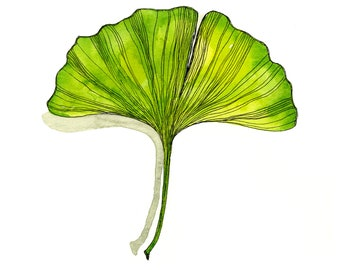 Ginkgo Biloba Leaf Watercolor Print, Ginko Plant Art, Wall Decor for Home, Bright Green Leaf Illustration, Nature Abstract Herbal Painting