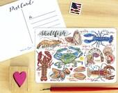 Shellfish Postcard.