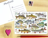 Fish postcard.