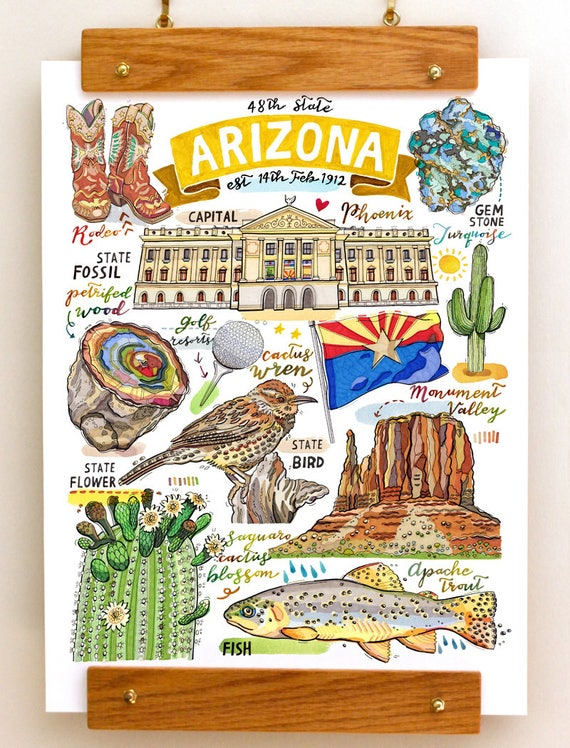 Arizona State Print Illustration State Symbols