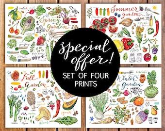 Garden prints. Gardening. Garden art. discount. Food art. Gift for gardener. Seasons. Kitchen decor. Fruit. Vegetables. Illustration.