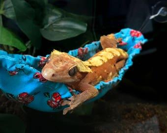 Gecko/Lizard Hammock *the original banana style gecko hammock :)*