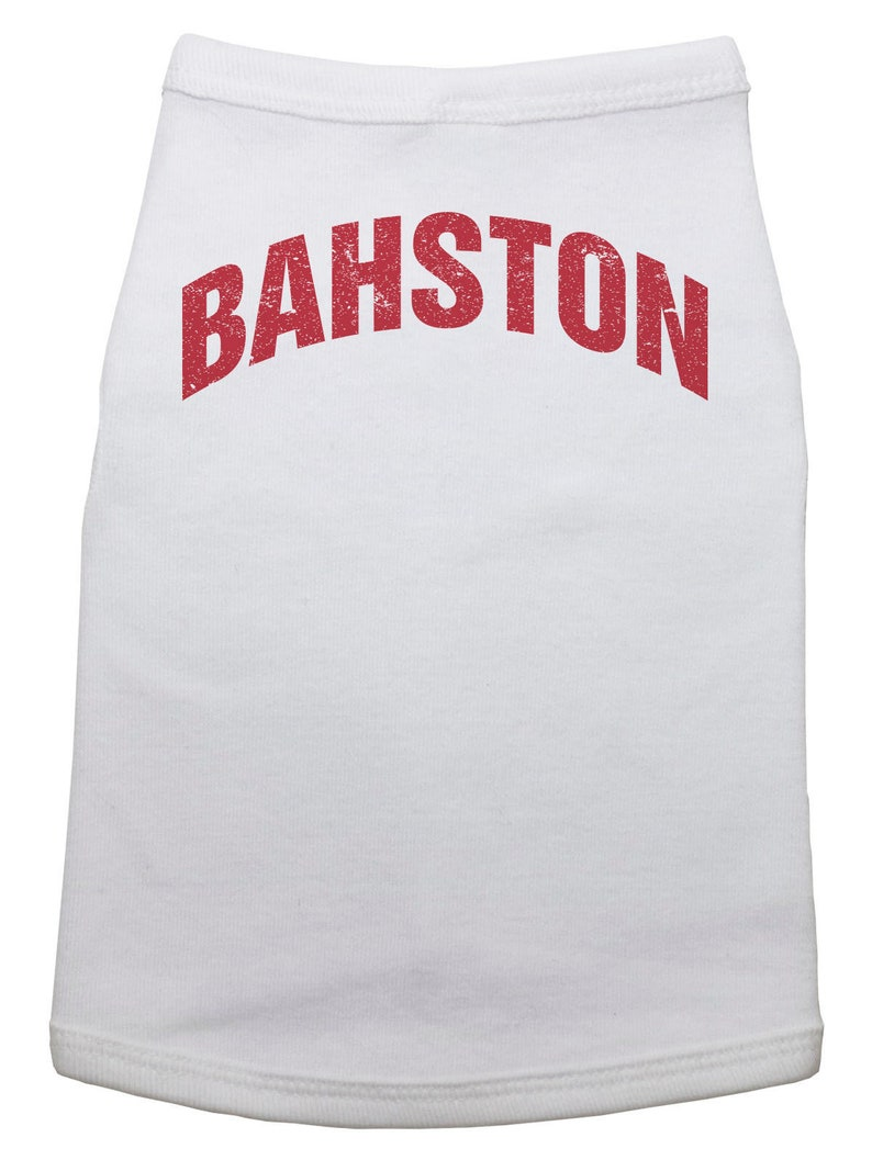 Dog Shirt, BAHSTON, Boston, Puppy, Grey, Massachusetts, Dog Bodysuit, Pet  Clothing, Pet Tops, Pet Supplies, Puppy Tops