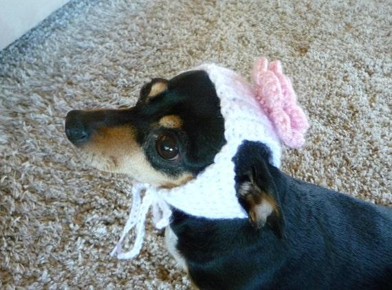 Dog Hat Crochet Pattern Rose Hat Flower Hat Pdf Crochet Etsy