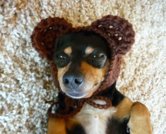 Bear Dog Hat Crochet Pattern Crochet Dog Hat Pattern Crochet Etsy