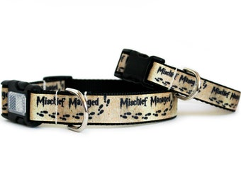Harry Potter Dog Collar Mischief Managed, Can be Personalized, Girl or Boy Dog Collar, Matching Leash Available- Mischief Managed