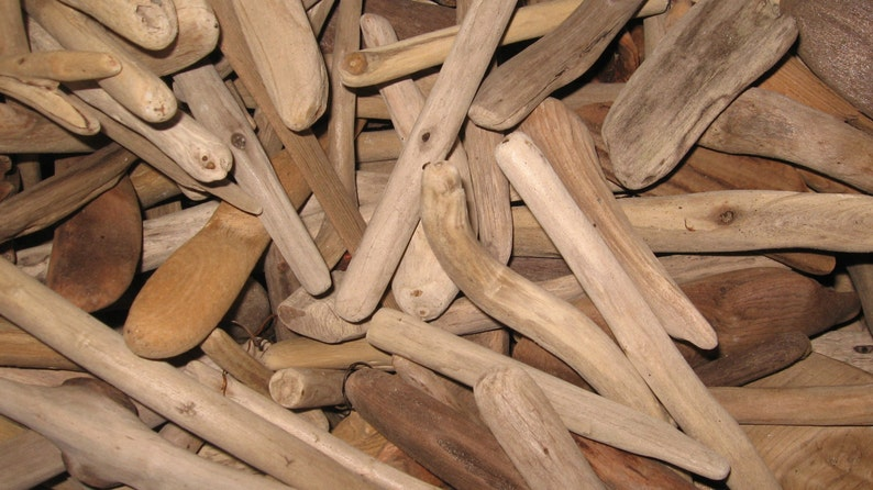 Driftwood by the Pound-30 Pcs. 37 Long Buy 4 image 0