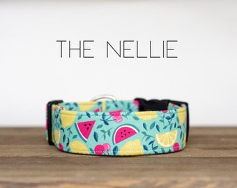 "Playful Fun Turquoise Watermelon, Lemon and Cherry Dog Collar ""The Nellie"""