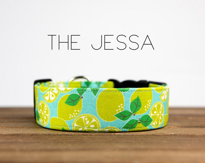 """Featured listing image: Lime and Blue Lemon Girly Dog Collar  """"The Jessa"""""""