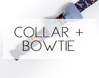 Any Dog Collar + Bowtie Package