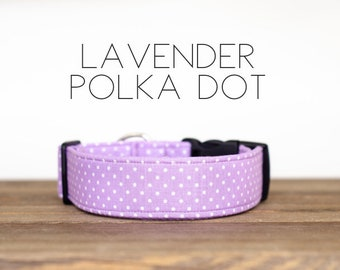 Lavender Polka Dot Dog Collar