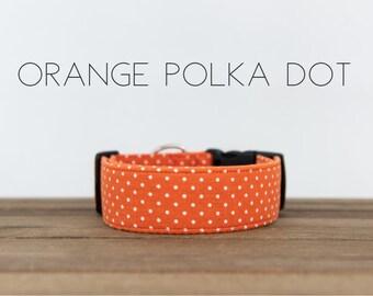"""Fall Pumpkin Inspired Dog Collar """"The Orange Polka Dot"""""""