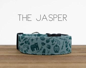 "Teal Outdoors Adventure Fun Dog Collar ""Jasper"""
