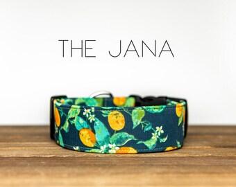 "Vintage Inspired Navy & Mint Floral Citrus Fruit Dog Collar  ""The Jana"""
