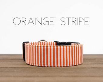 "Orange and White Stripe Dog Collar ""Orange Stripe"""