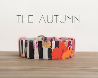 "Modern Colorful Girly Stripe & Floral Dog Collar ""The Autumn"""