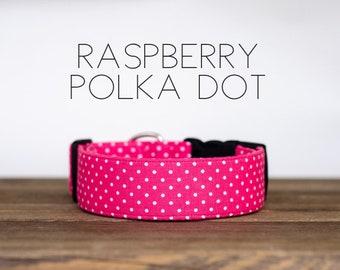 Raspberry Polka Dot Dog Collar