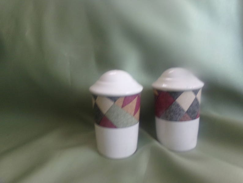 Mikasa Studio Nova   Palm Desert Pattern  Salt /& Pepper Shakers  Discontinued  1995