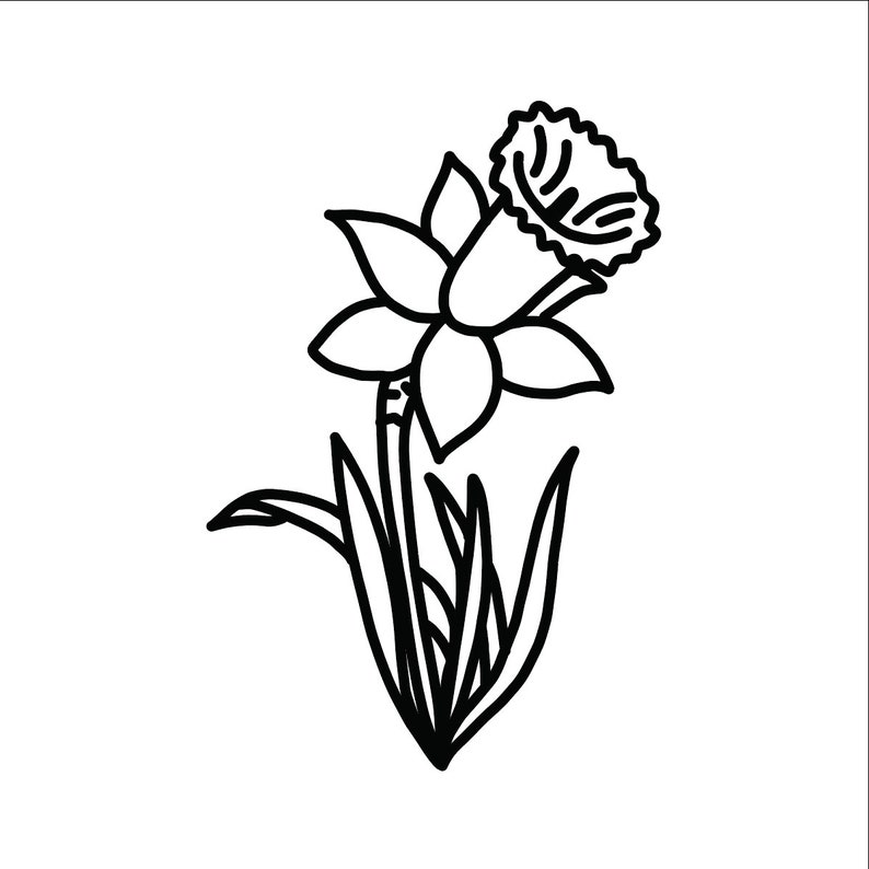 Flower outline clipart transparent pictures on Cliparts