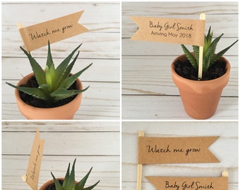 Baby Shower, Wedding Plant Favors, Thank you Plant Favors, Baby in Bloom Baby Shower, Watch Me Grow, Baby Gender Reveal Party
