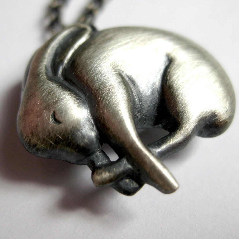 20+ Bunny rabbit sleeping silver Image