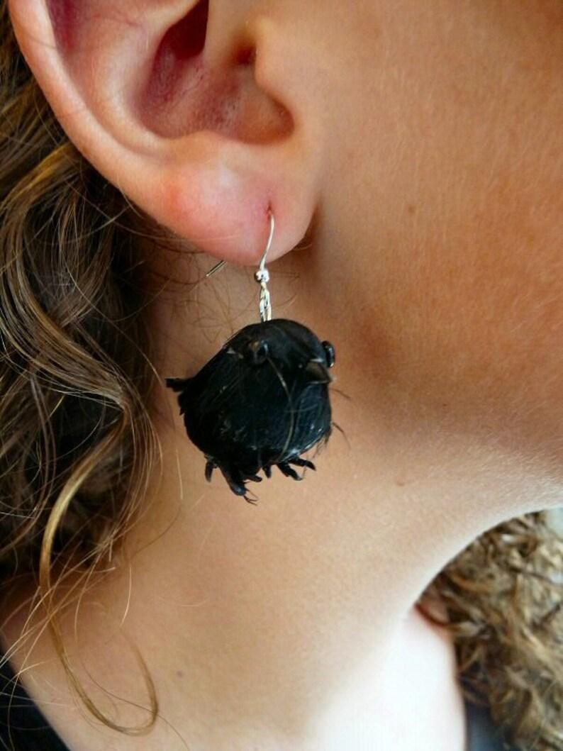 Black Raven Earrings image 0