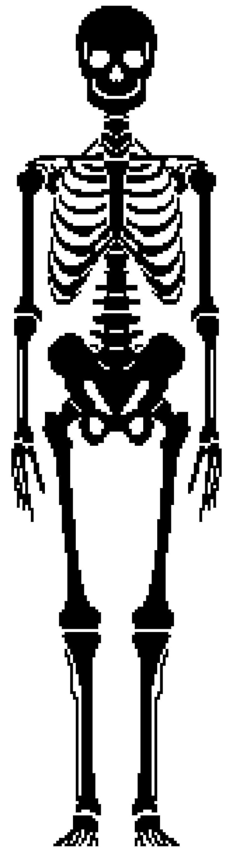 Skeleton Handpainted Needlepoint Canvas