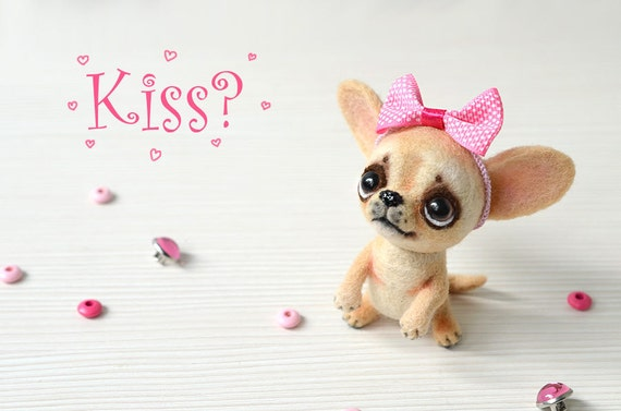 cute pepe is our sweet little puppy boy post blog - 570×377