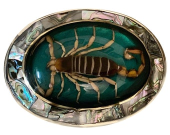 Vintage Real Encased Scorpion Belt Buckle Mexico Blue Arachnid Preserved Inlay Cabochon Dried Mens Gag Gift Wedding Party Groomsman