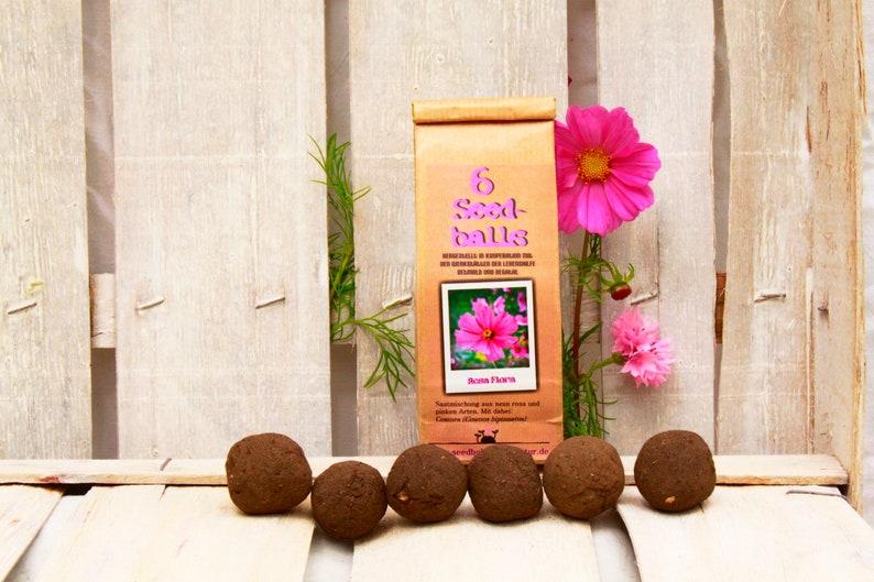 Seedballs pink flora 6s sea bombs with pink flowering flower image 0