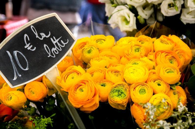 Paris flower photo fine art Paris photography yellow floral image 0