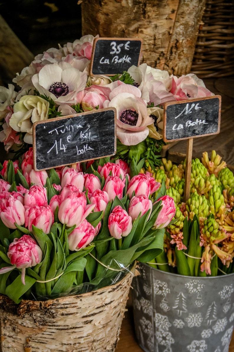 Paris Spring flowers by Falling Off Bicycles fine art Paris image 0