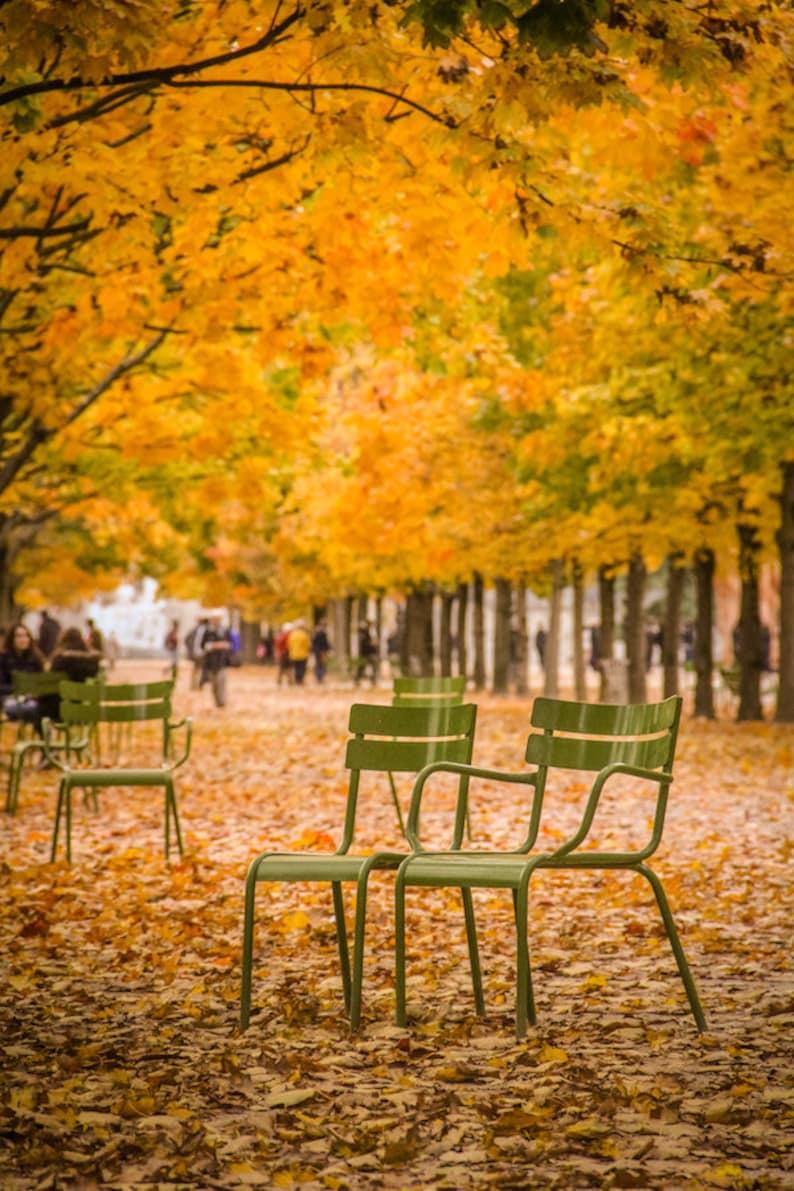 Fall in Paris photograph fine art Paris photography travel image 0