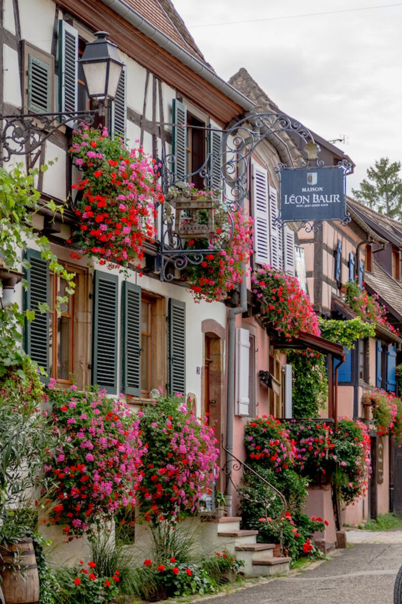 Colorful Alsace window boxes in France France photo Falling image 0