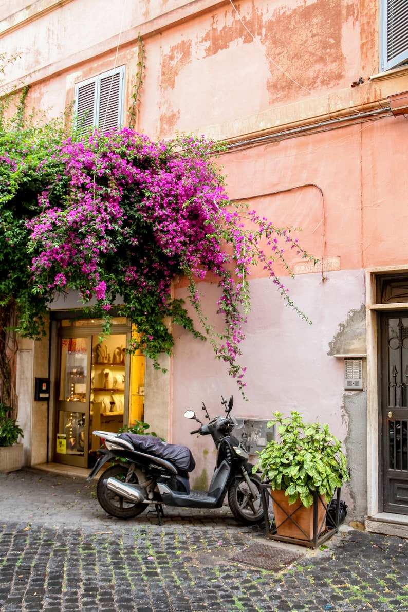 Rome Italy door Falling Off Bicycles fine art travel image 0