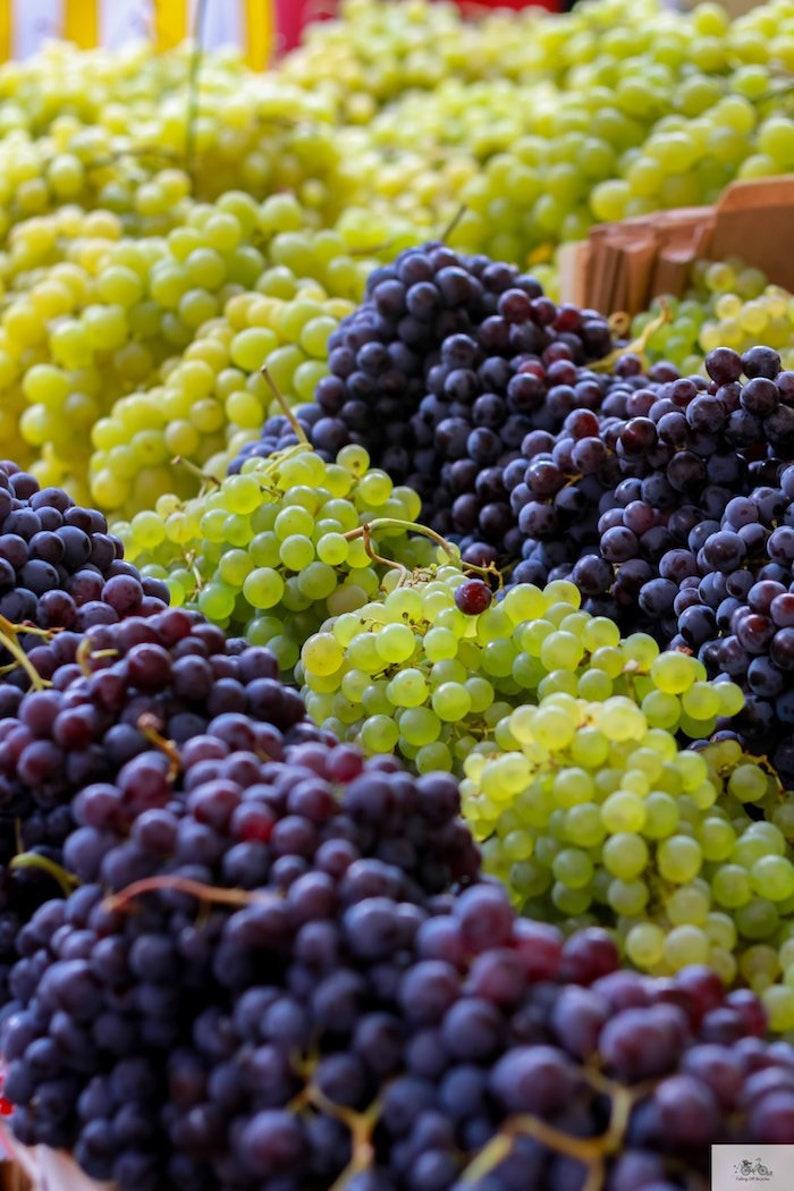 Grape food photo fine art food photograph farmer's image 0