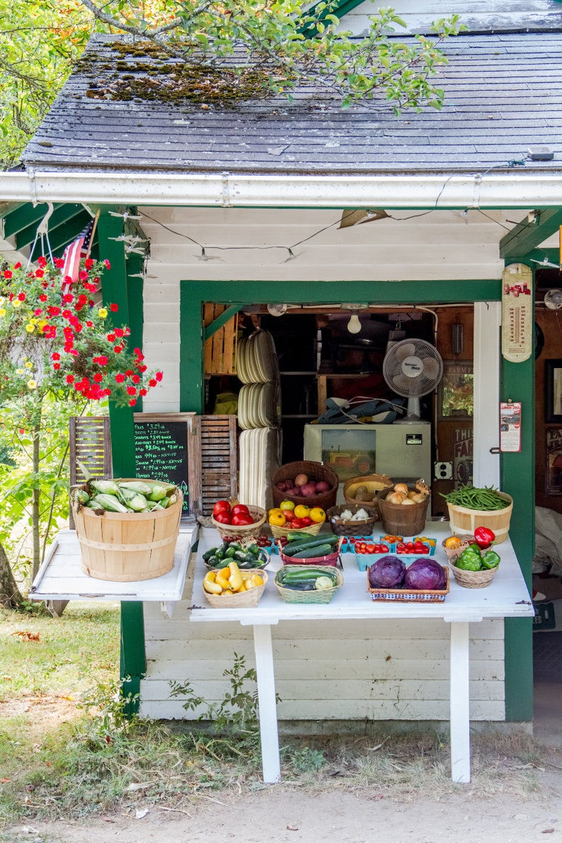 Food photo Maine fruit stand fine art kitchen photography image 0