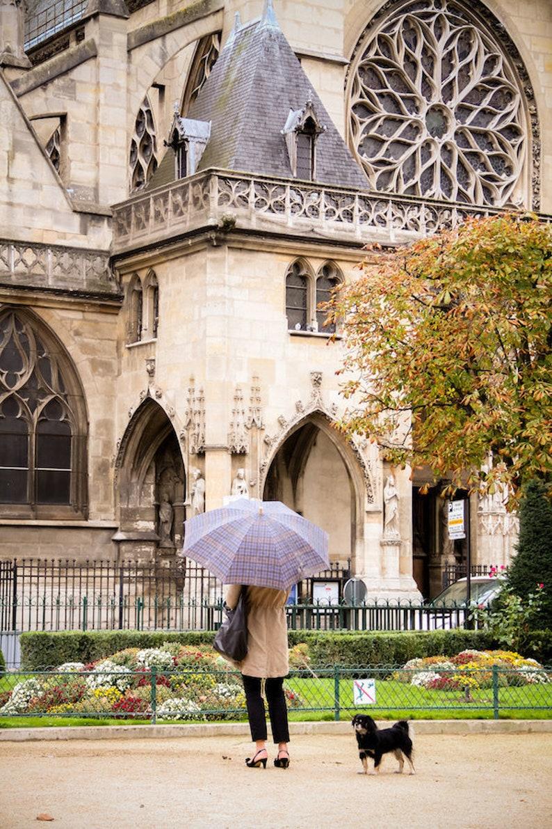 Fall in Paris photo fall leaves photo umbrella photo fine image 0