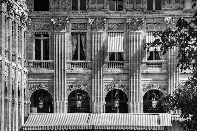 Palais Royal photo black and white fine art Paris image 0