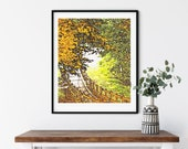 The Bridge Autumn Woods Sanctuary Downloadable Printable Fine Art Photography Fall 2020