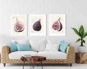 Figs Honeycomb, Downloadable Art, Foodie Kitchen Decor, Botanical Patio Art, Fruit Cuisine Decor, Downloadable Chef Gift, Organic Wall Art