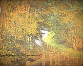 Rustic Nature Art Photograph of Bridge in Golden Forest Printed on Water Color Paper